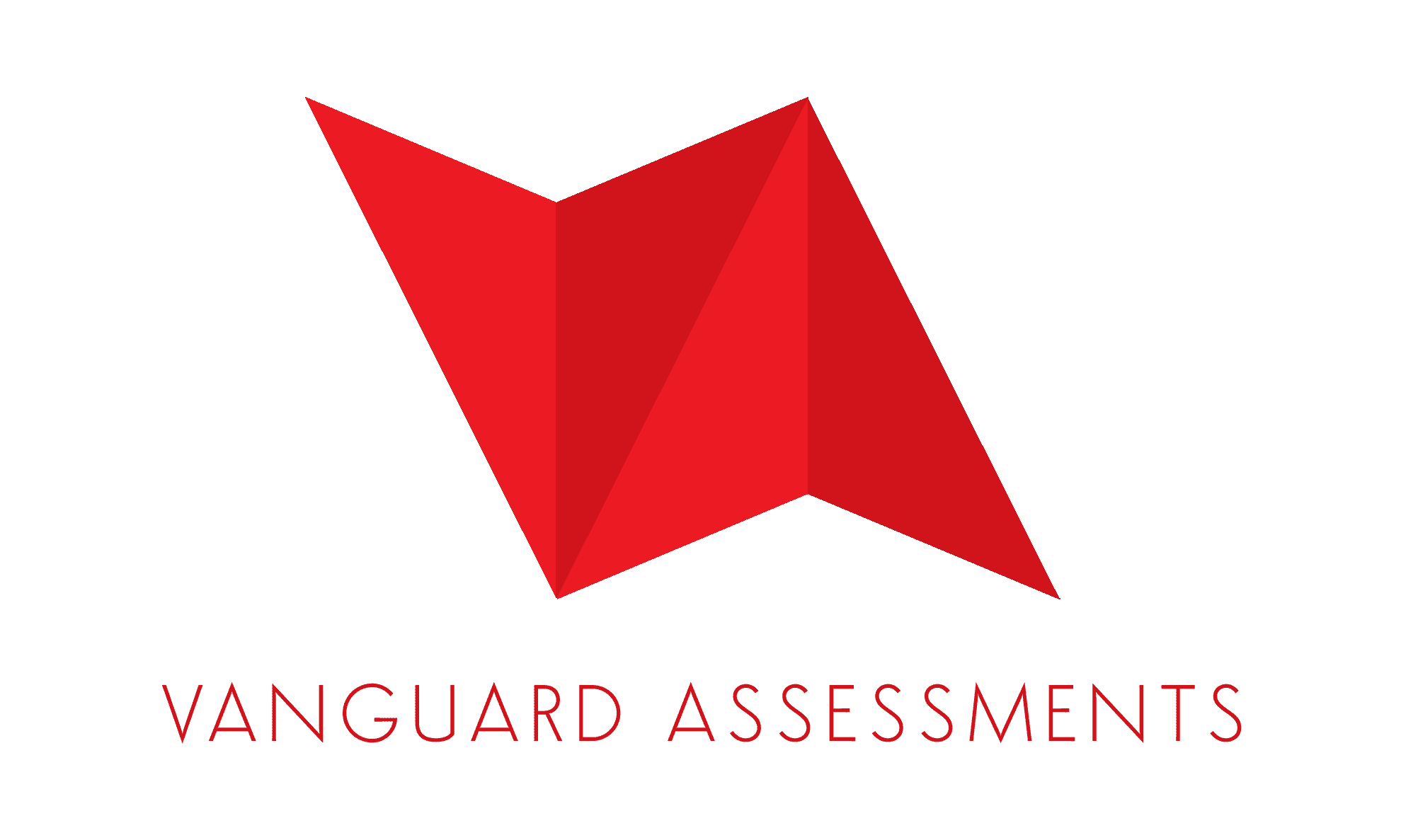 Vanguard Assesments Logo